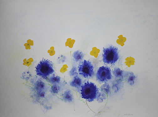 CORNFLOWERS & POPPIES Will Barton 72cmx52cm
